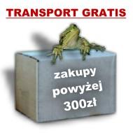 trasport gratis dla zakupów powyżej 300zł